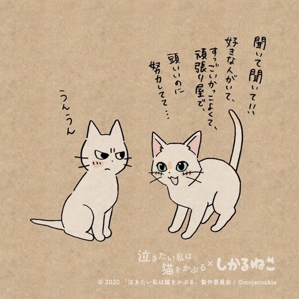 猫 が 母 に なつき ませ ん 最新 話